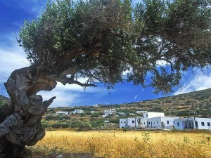 Greece – 'The Jewel of the Cyclades'